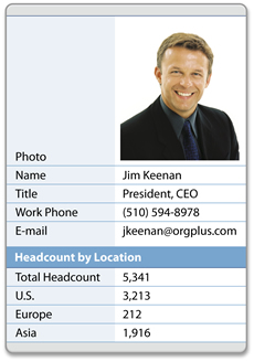 Headcount Example Profile
